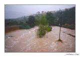 Riudada al riu de la Sénia. 2000