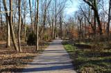 Long Path Rowe Woods