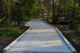 Lotus Pond Walk