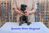 Brantarby Winter Playground
