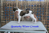 Brantarby Winter Crusade
