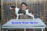 Brantarby Winter Warrior