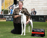 Sydney Royal 2012