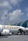 EMIRATES AIRBUS A340 500 DXB RF IMG_2672.jpg
