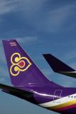 THAI AIRBUS A340 600 SYD RF IMG_0145.jpg