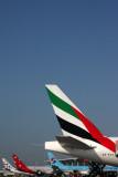 AIRCRAFT TAILS BNE RF IMG_5844.jpg