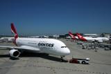 QANTAS AIRCRAFT SYD RF IMG_6228.jpg