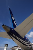 ANA BOEING 787 FUK RF IMG_6379.jpg