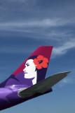 HAWAIIAN AIRBUS A330 200 LAX RF IMG_6773.jpg