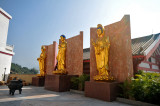 Po Fook Memorial Hall, Sha Tin
