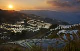 Yunnan (Feb 2011)