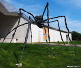 Spider at the Kemper Museum of Contemporary Art