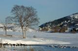 DSC00574 - Winter Wonderland**WINNER**