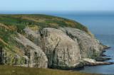_DSC1638 - The Bird Rocks