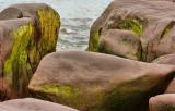 _DSC1923 - Patrick's Cove Boulders