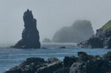 _DSC3195 - Sea Stack in Fog