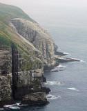 Cape St. Marys Trip 109