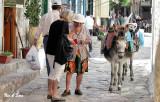 vendor and her donkeys