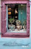 Purple Store Window