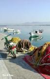 fishing nets & boats