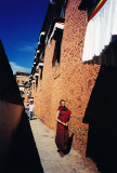 a place in the sun - Tibet