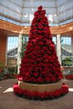 Christmas in the Oaks Pointsettia Tree