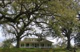 Magnolia Mound