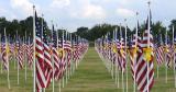 Honoring the War Heroes