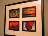 Gallery of December 2007
