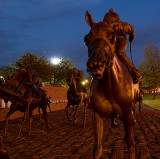 Thoroughbred Park At Night