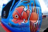 Nemo's Vision