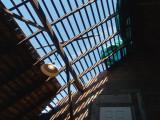 Through the roof -ArtP