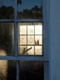 5th tie - Looking through the summer kitchen -ArtP