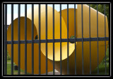 do not vote - mobius behind bars - brent