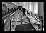 do not vote  -  walking towards flight - brent