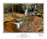 Elakala Falls 2.jpg