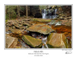 Elakala Falls 3.jpg