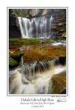 Elakala Falls  1110 1.jpg