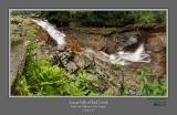 Red Creek Falls Lower 1.jpg