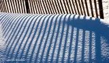 Fence Shadows