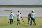 Birding near marshes of Doğubeyazıt