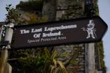 Ireland's last leprechauns