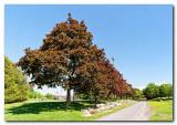 Parc DelormeDelorme Park