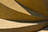 Nut'n to See Here by Carl Jara  (click to enlarge)