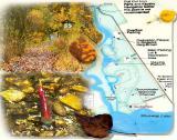 Map_2475.