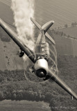 Yak-52 Janie