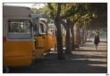 012-Mal-Bus.jpg