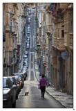 MALTA - Gatos malteses / Maltese cats