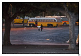 008-Mal-Bus.jpg