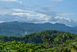 Jamaica's Backbone - Blue Mountains